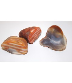 Agate, 1 face polie Provenance Inde